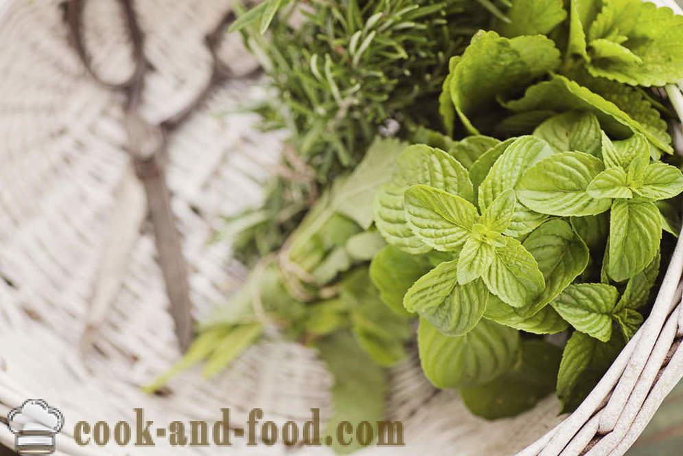 A new way to save herbs - video recipes at home
